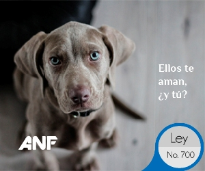 leyes anf-05