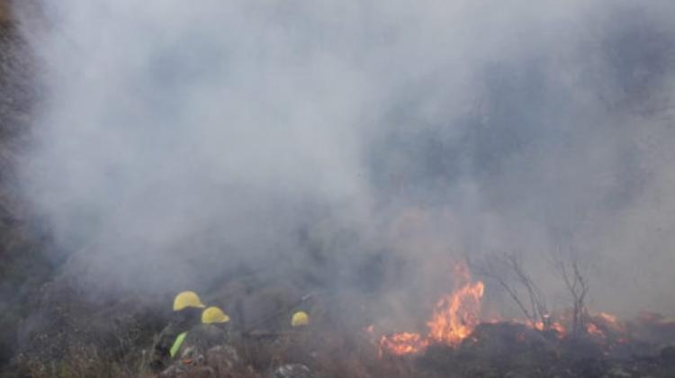 Incendio-Pinos-Norte-1-696x432