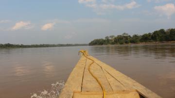 El uso de mercurio en la minería aurífera pone en riesgo a la Amazonía y la castaña