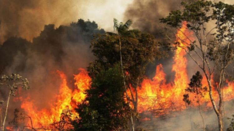 c-incendio-brasil1-420x278-400135-E830